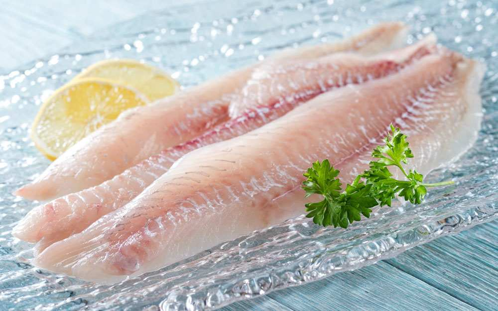 Raw Snook Fillets
